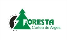 Manufacturers Of Glued-laminated Construction Timber - Glulam ISO (9000 Or 14001) Companies  - SC FORESTA ARGES SA