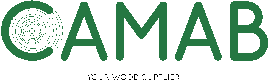 Logs Exporter - Campanello & Co AB